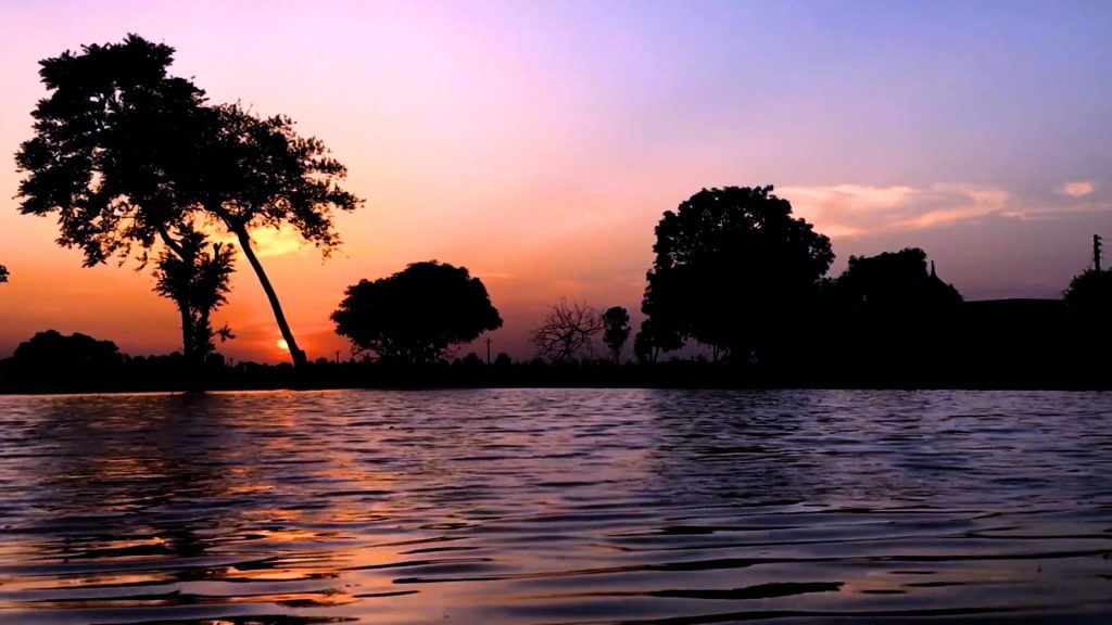 Summer Evening Sunset